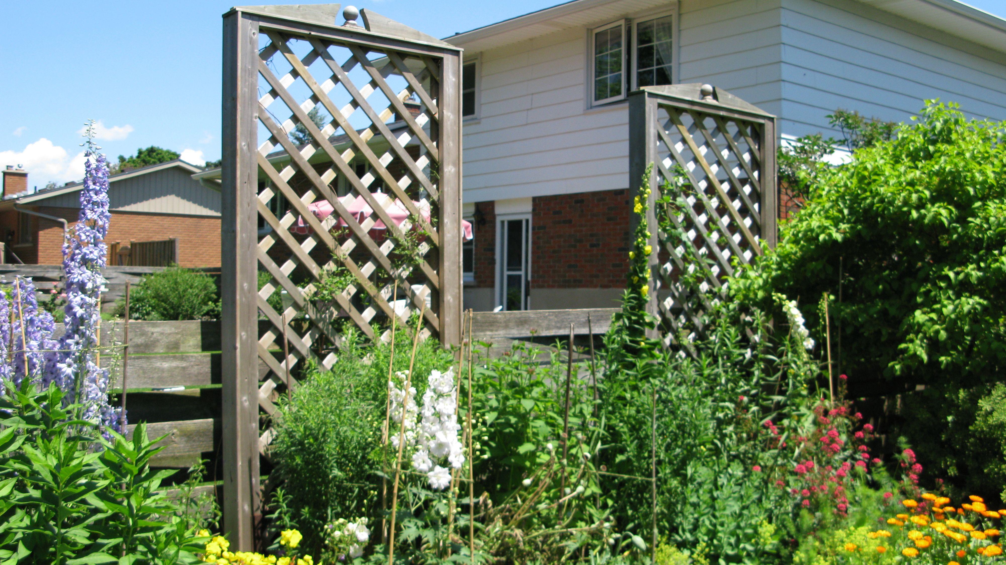 Best 25 bq fence panels ideas only on pinterest raised gardens best 25 bq fence panels ideas only on pinterest raised gardens vegetable garden fences and fence garden baanklon Choice Image