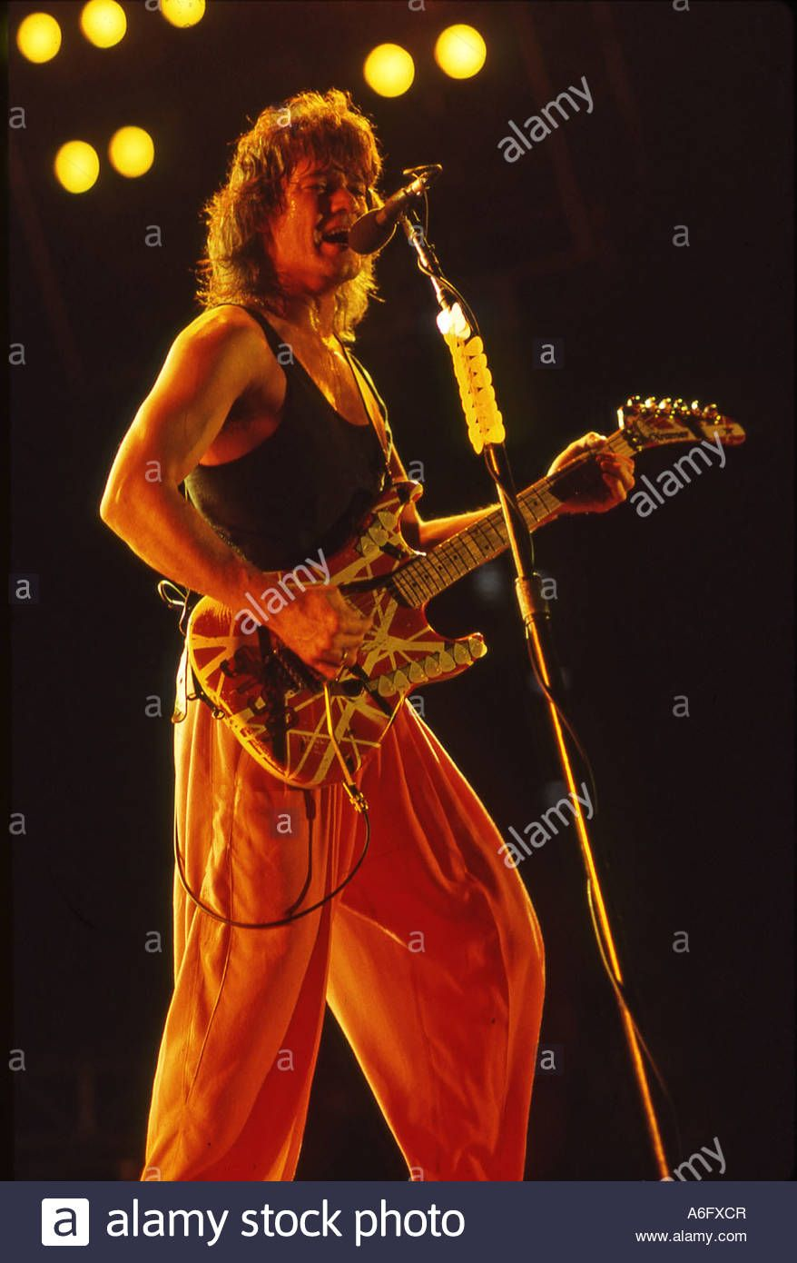Pin By Luca Ferrara On Eddie Van Halen Eddie Van Halen Van Halen Red Rocker