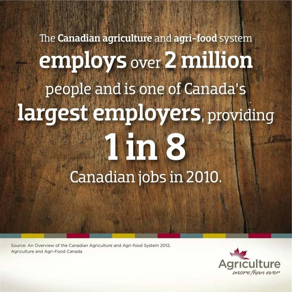 Ag More Than Ever on | AITC AG CAREERS | Agriculture, Agriculture