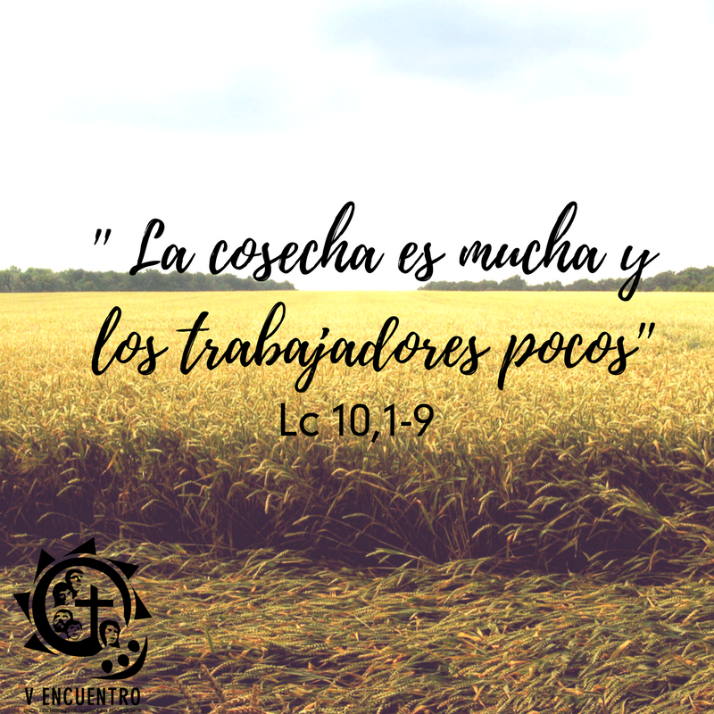 Psalm 23 usccb