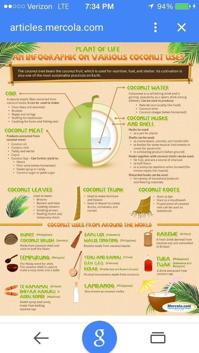 Pin by Daphne Hyatt on Health benefits | Coconut health ...