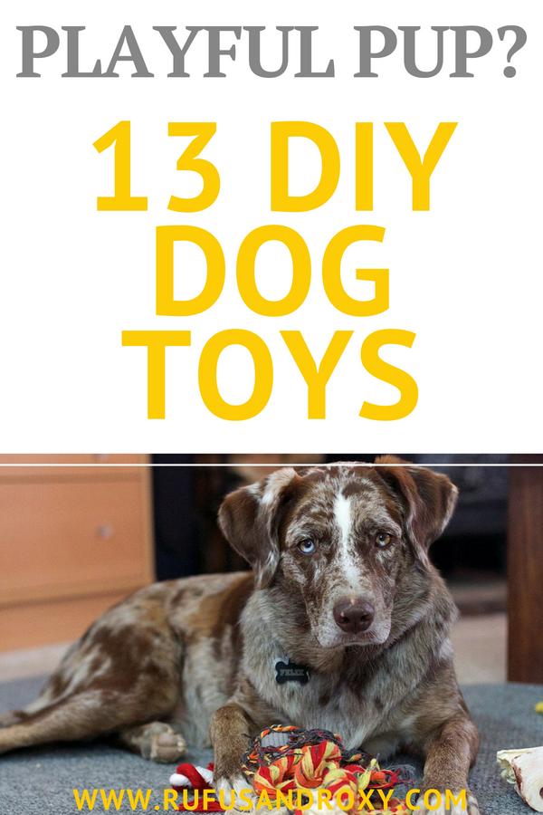 Dog Toys Discount Diy dog toys, Tough dog toys, Diy dog