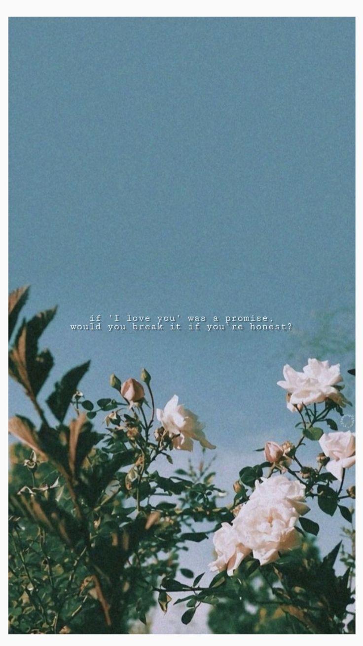 Background Flowers Eilish Billie Love Aesthetic Vintage Quote Sky Lockscreen Sevimli Sozler Soyut Fotografcilik Resimli Alintilar