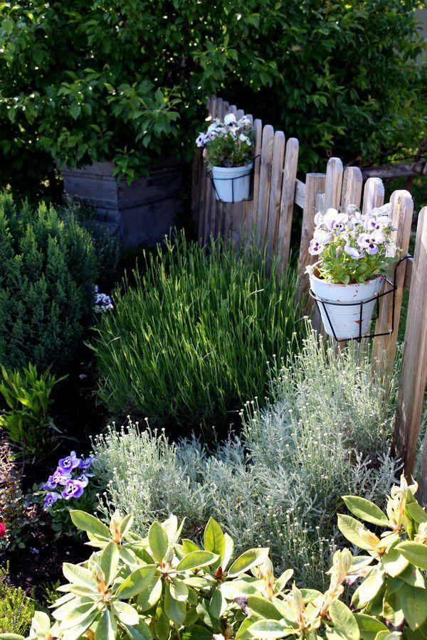 Un joli jardin à moindre frais Thym, Lavande et Jardins - Faire Son Jardin Paysager
