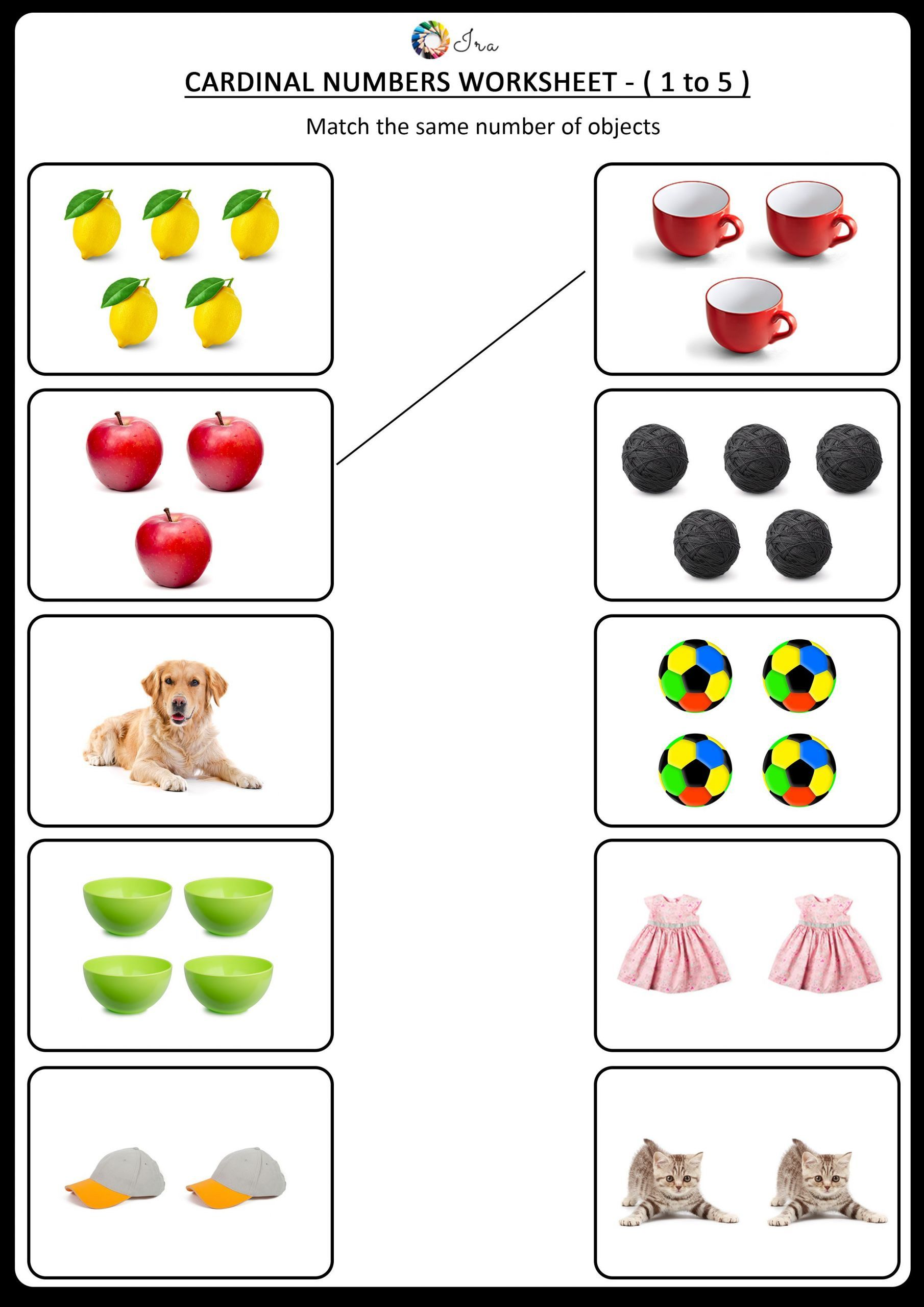 3 Number 5 Worksheet For Kids In With Images