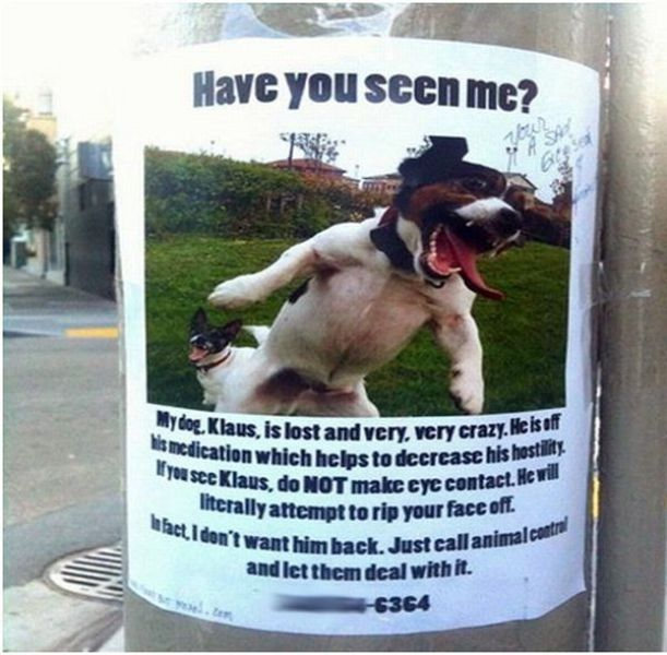21 Funny Lost Found Signs – Found Dog Poster Template