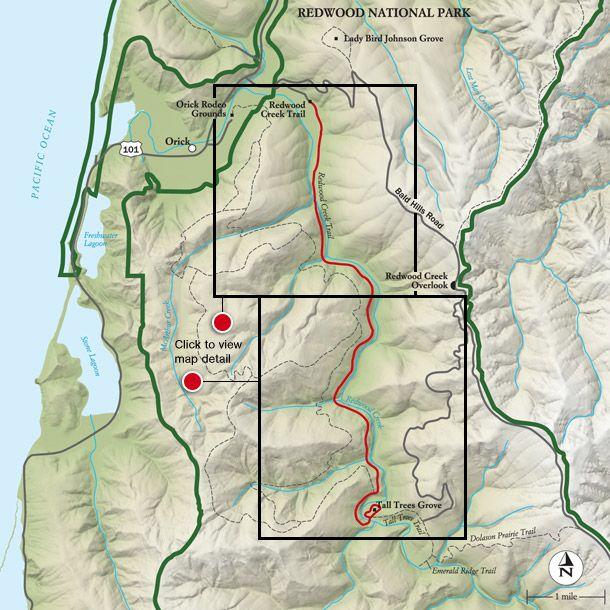 Best Redwood National Park Hike, Trail Map -- National