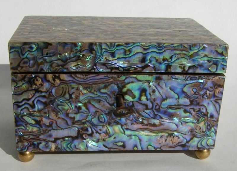967 Sold Rare Abalone Shell Single Tea Caddy 19th Ct JEWELLERY
