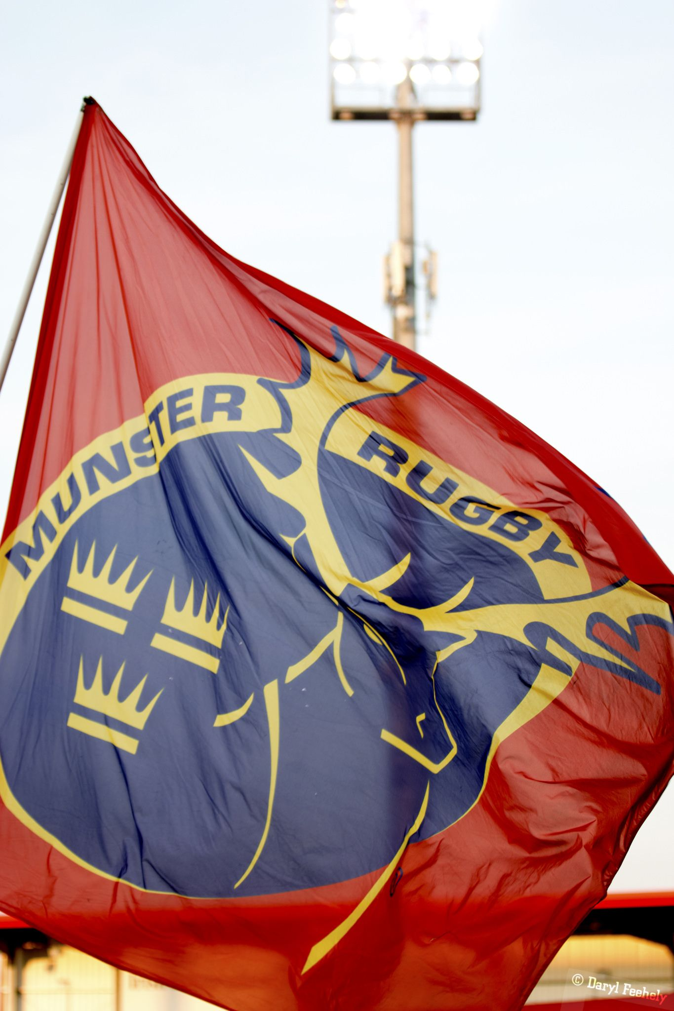 Munster Flag Munster Rugby Flag Munster
