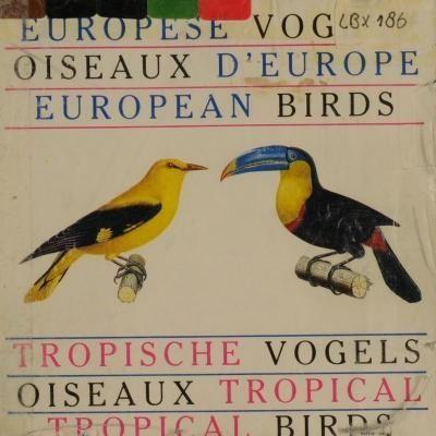 Europese vogels ; Tropische vogels -: