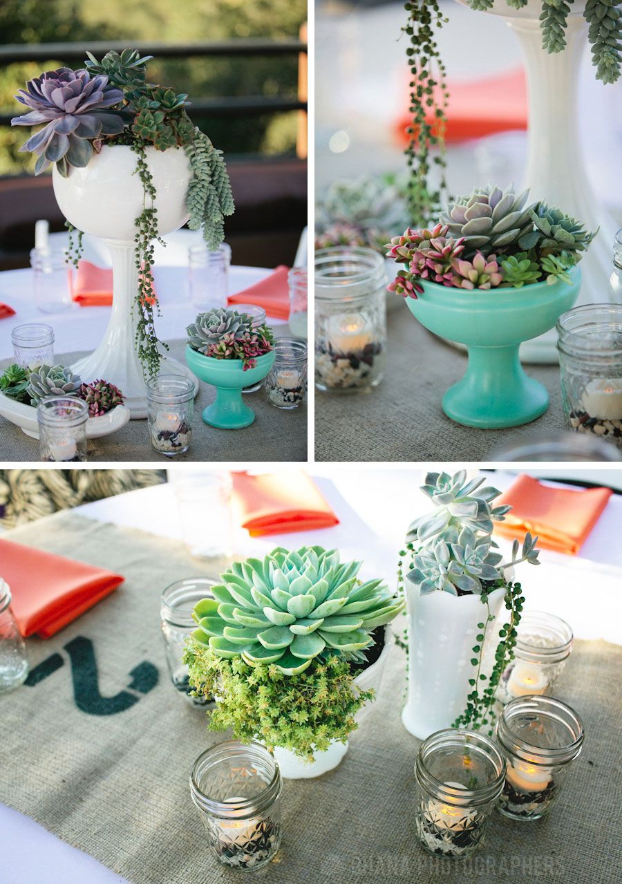 Piper presley and kyle luker diy wedding succulent centerpieces at