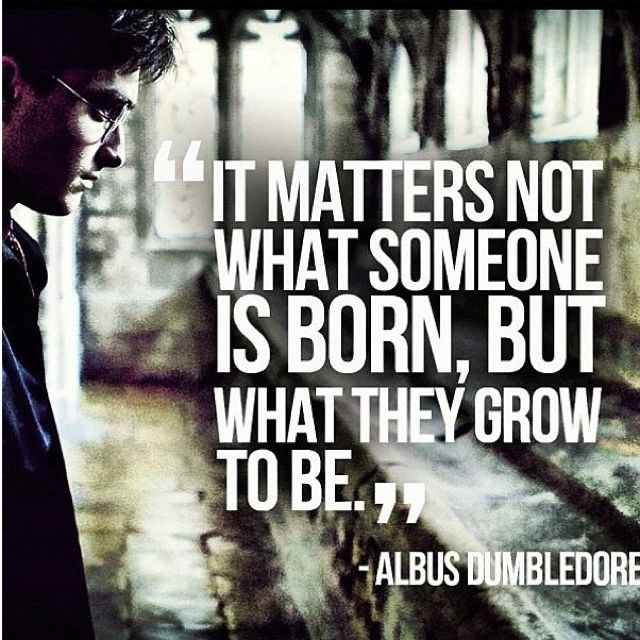 Dumbledore Quote Just Another Reason Why Harry Potter Is My Favorite Fairy Tale Harry Potter Quotes Dumbledore Quotes Harry Potter