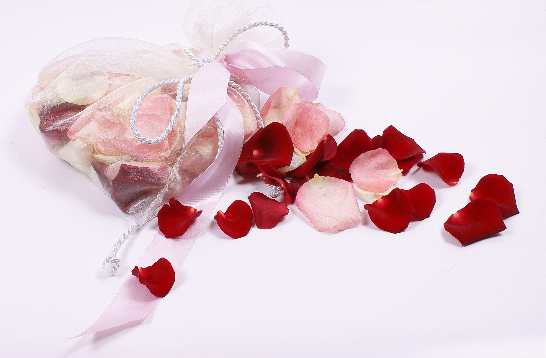 Букет цветов лепестки