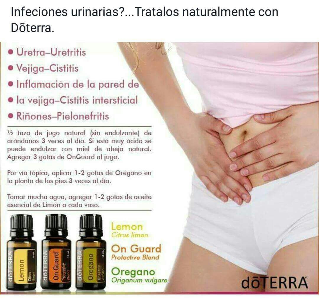 Infecci 243 N V 237 As Urinarias Health Doterra Essential Oils