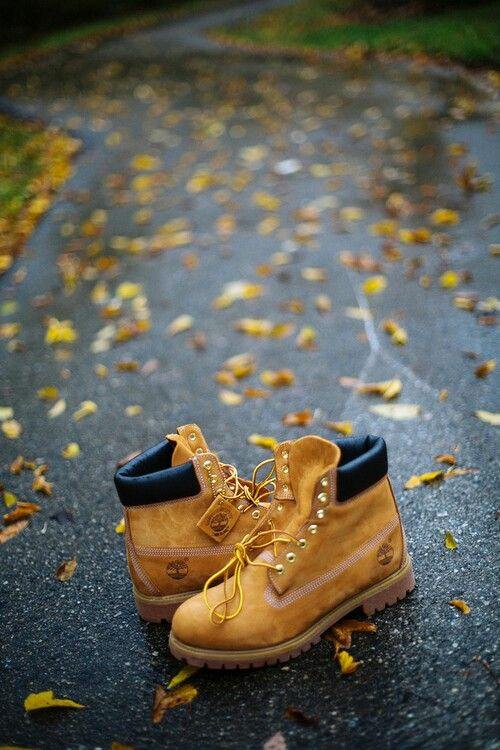 Fall is coming. #timberland #leaves #yellowboot