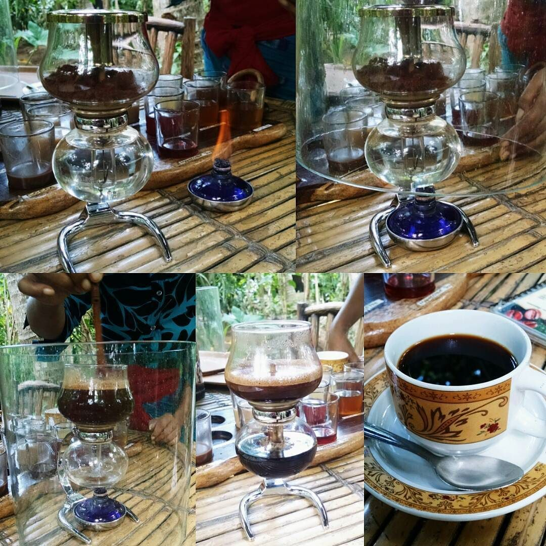 Kopi Luwak is the world's most expensive coffee and is