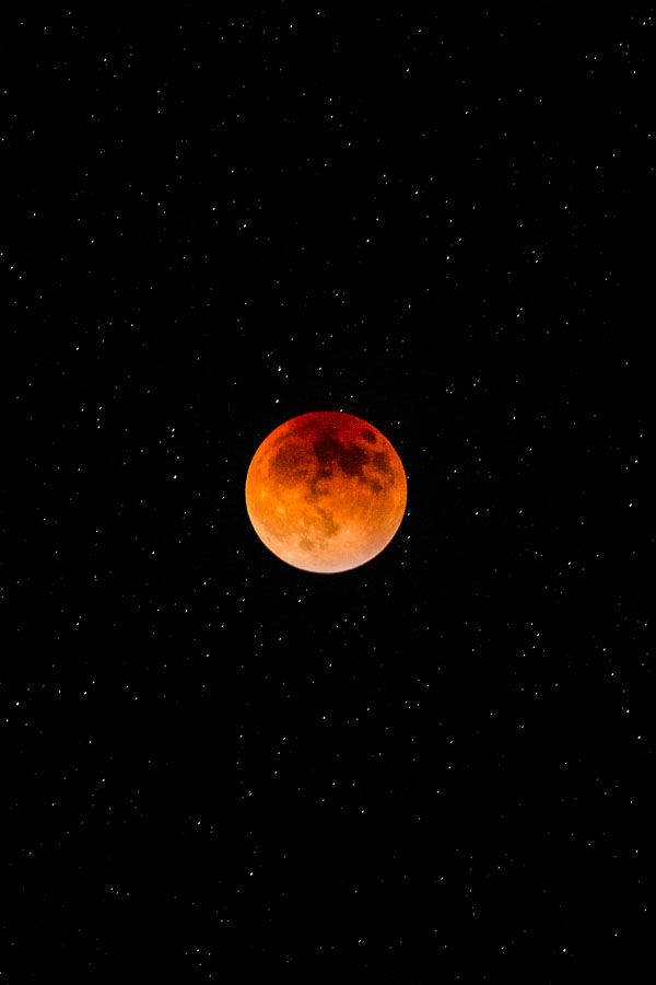 theworkofchad:  Lunar Eclipse Super Moon - 28th September 2015 Tumblr / Facebook / Instagram / More Night Scenes