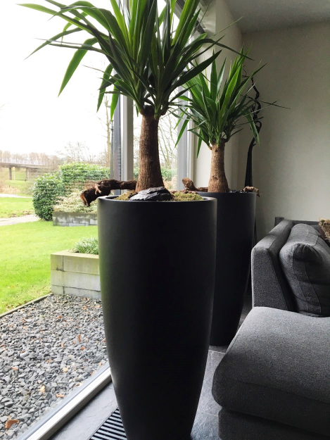 Grote Hoge Plantenpot.Bloempot Vaas Kenny Hoogte 100 Cm Zwart Vtw In 2019 Bloemen