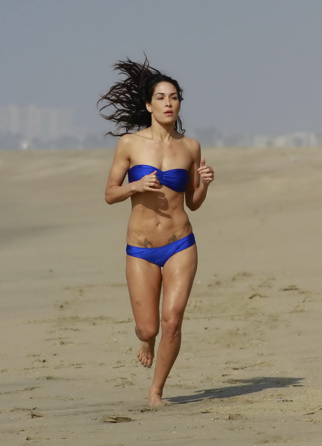 brie bella and nikki bella bikini beach in la video download
