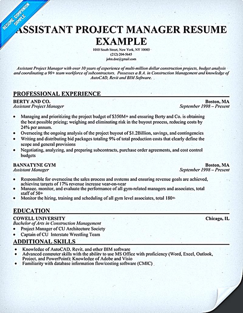 Project Management Skills Resume Project Manager Resume Tell The Company Or Organization About Your