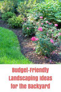 10 Ideas For Budget Friendly Backyard Landscaping Backyard Inspiration
