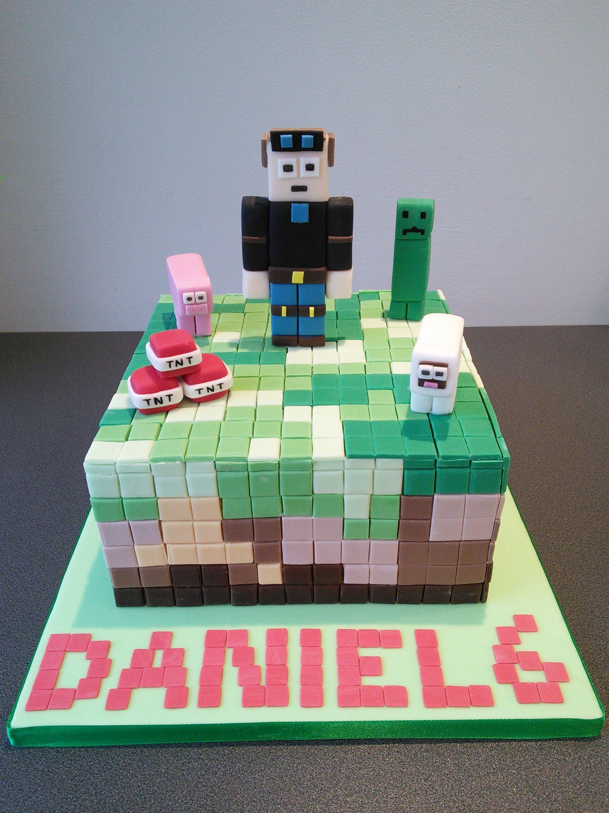 Minecraft Birthday Cake With Dan TDN TNT Sheep Pig And Creeper - Sheep cakes birthday