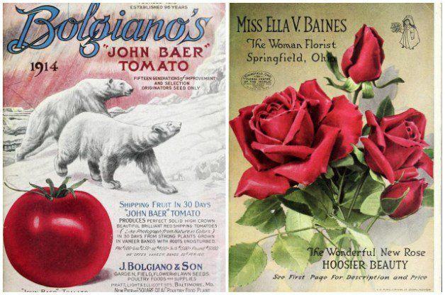 Vintage Seed Catalogs Crafts Pinterest Catalog, Garden signs