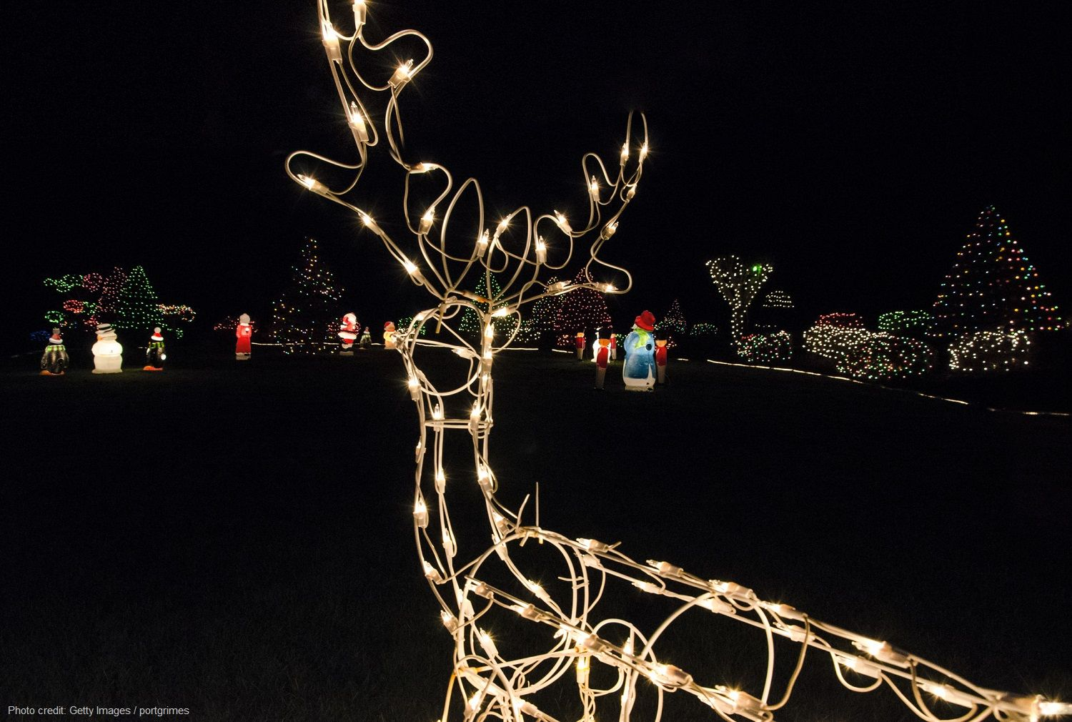 Be Sure Not to Miss Gardens Aglow at Coastal Maine