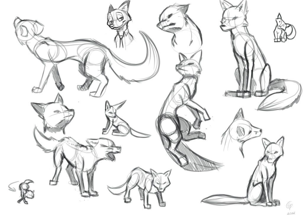 As Much As I Ve Drawn The Faces Of Many Animals I Haven T Really Drawn The Entire Body I Decided To Start With A F Fox Sketch Animal Drawings Animal Sketches