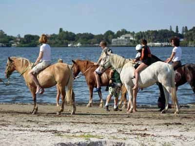 Beachhorses Horseback Riding Bradenton Fl Must Do Visitor Guides