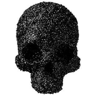 Dead or Alive Jet Black Crystal Skull by Fabien Baron ($500-5000) - Svpply