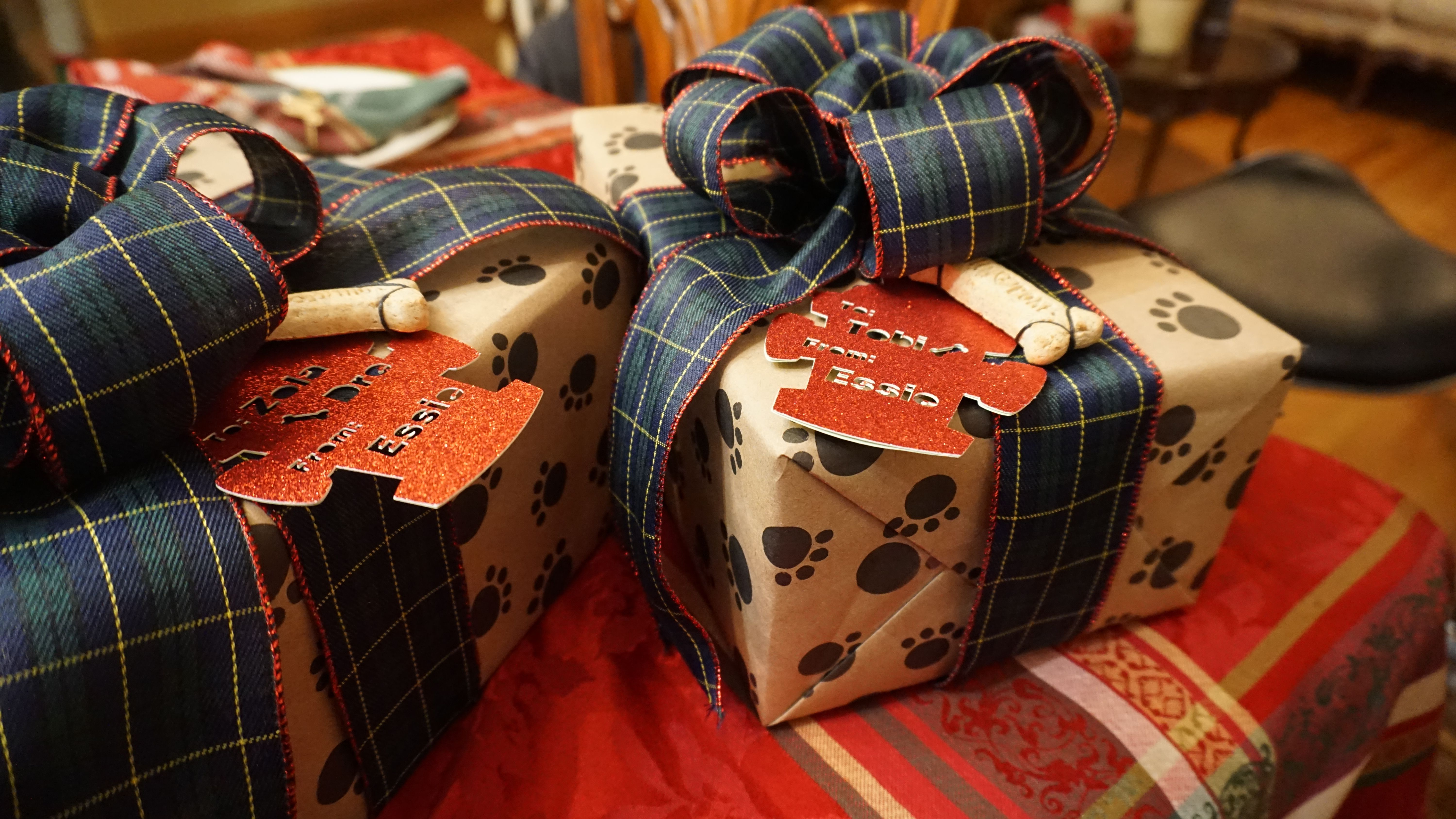 What Is A Good Gift For A Dog Ideas
