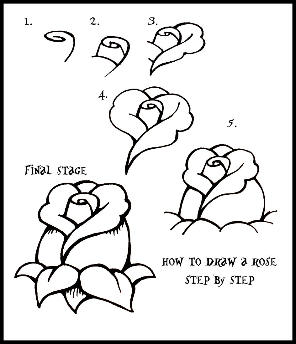 Uncategorized Simple Ways To Draw Animals how to draw flowers daryl hobson artwork a rose easy step by step