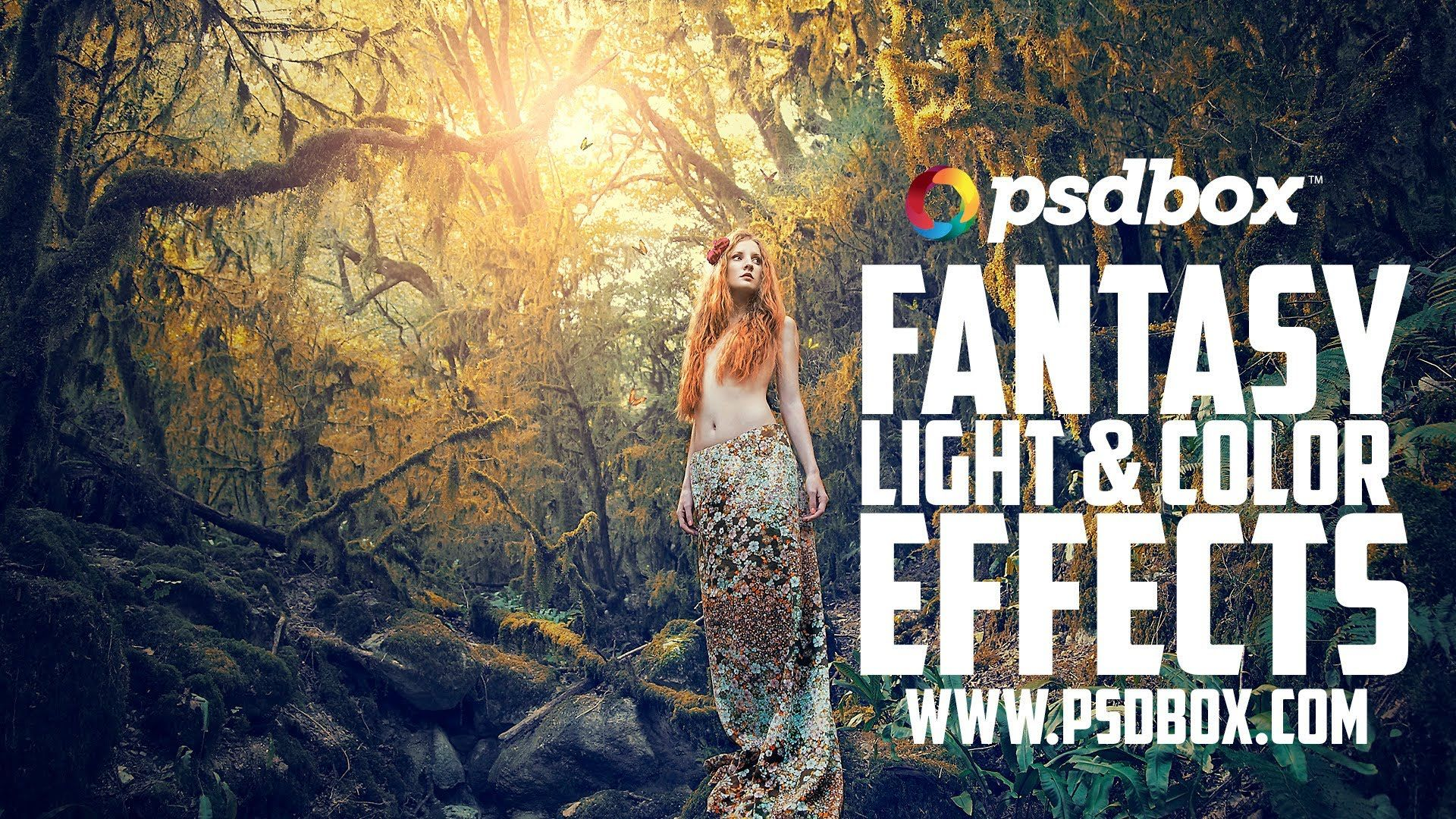 Fairytale forest color and light effects tutorial psd box fairytale forest color and light effects tutorial psd box playlist baditri Image collections