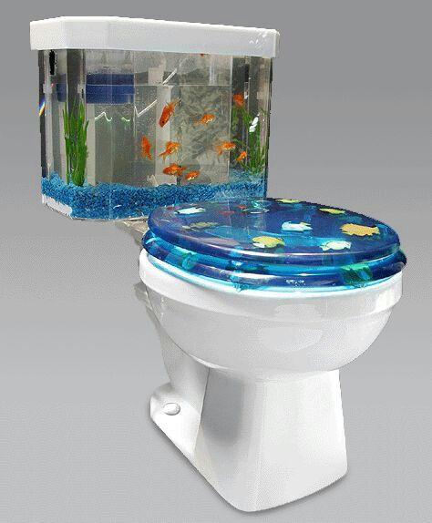 Toilet Bowl Aquarium Weird Furniture Cool Toilets Toilet Tank