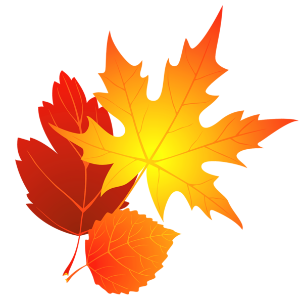 transparent fall leaves clipart gif zele pinterest fall rh pinterest com falling leaves clip art animated gif falling leaves clipart free