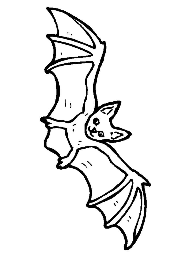 Bat Coloring Pages For Your Kids Free Coloring Sheets Bat Coloring Pages Animal Coloring Pages Avengers Coloring Pages