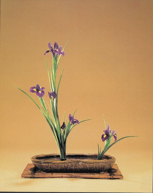 Ikebana japanese flower classic art of