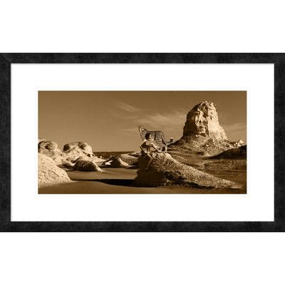 """Global Gallery 'Wild Beauty' by Marc Moreau Framed Graphic Art Size: 20"""" H x 32"""" W x 1.5"""" D"""