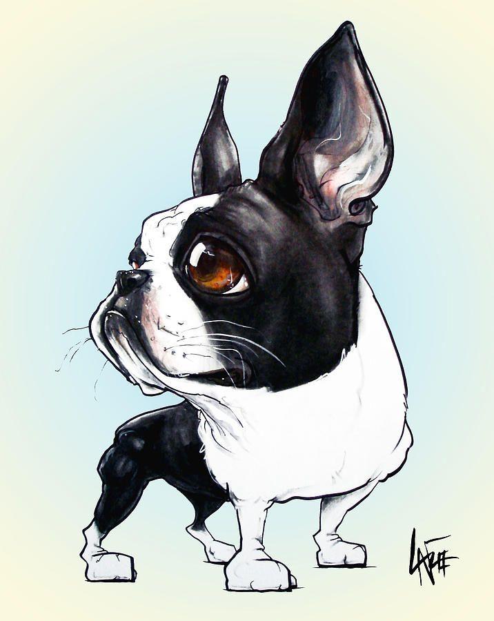 Canine Caricatures Boston Terrier Art Boston Terrier Boston