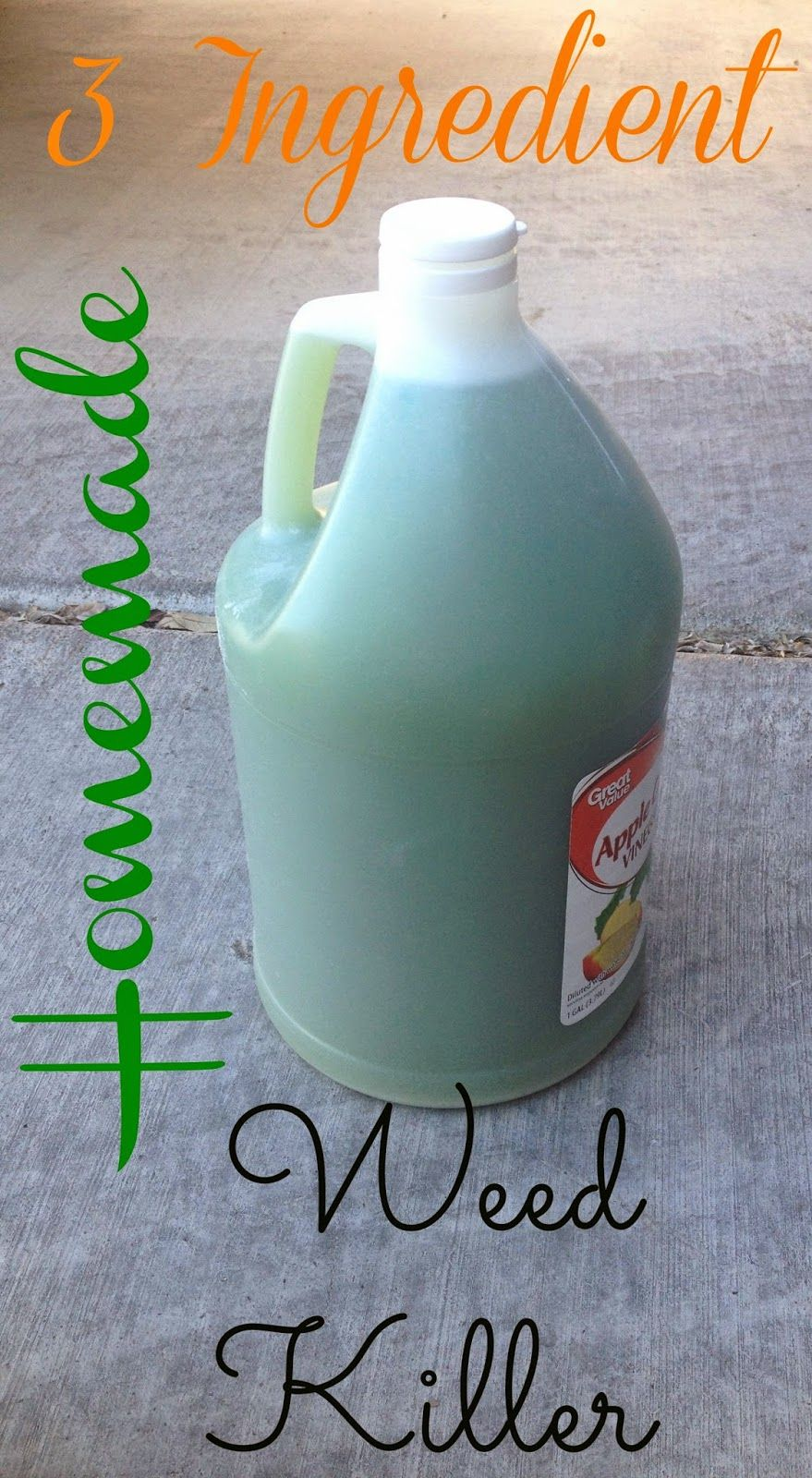 mommys craft obsession 3 ingredient homemade weed killer. Black Bedroom Furniture Sets. Home Design Ideas