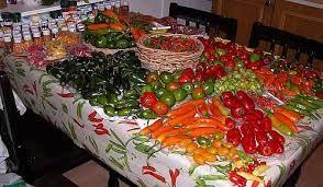 Kuvahaun tulos haulle chilin kasvatus ulkona