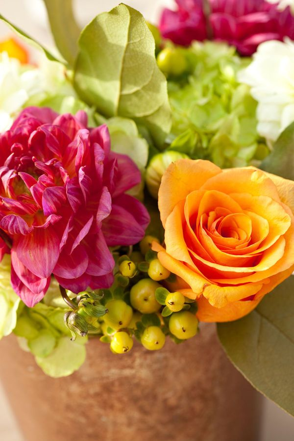 pink orange and green flowers