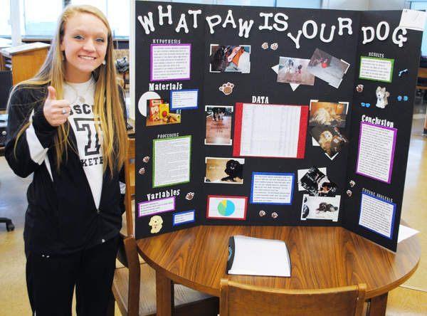 science fair projects dogs | ... project award is shown with her ...