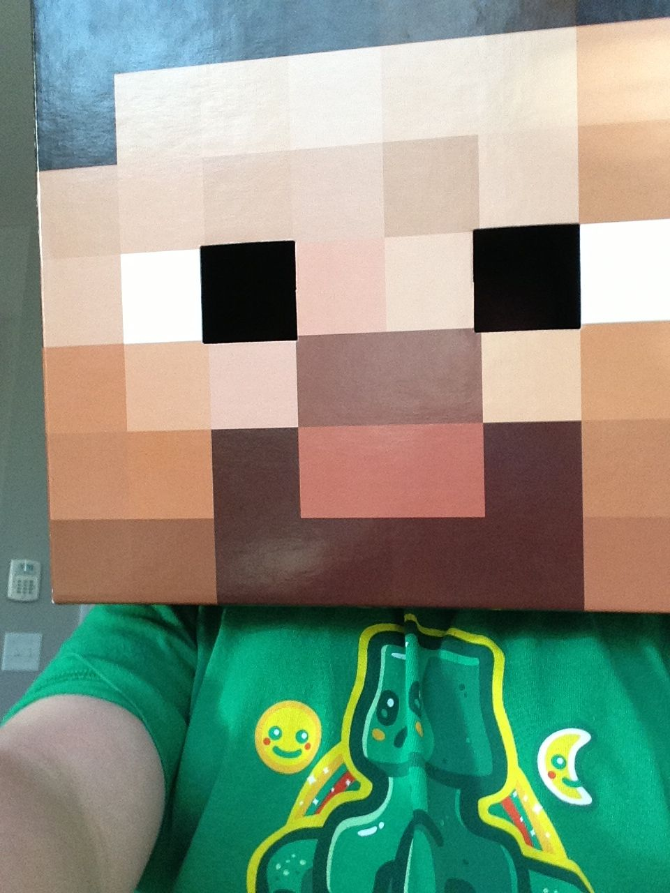 Minecraft Steve Head Minecraft steve head, Minecraft party