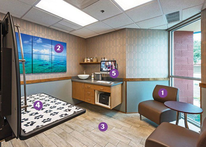The 2016 Hospital Of The Year The Doctor Will See You Now Hospital Design Veterinary Clinic Clinic Design