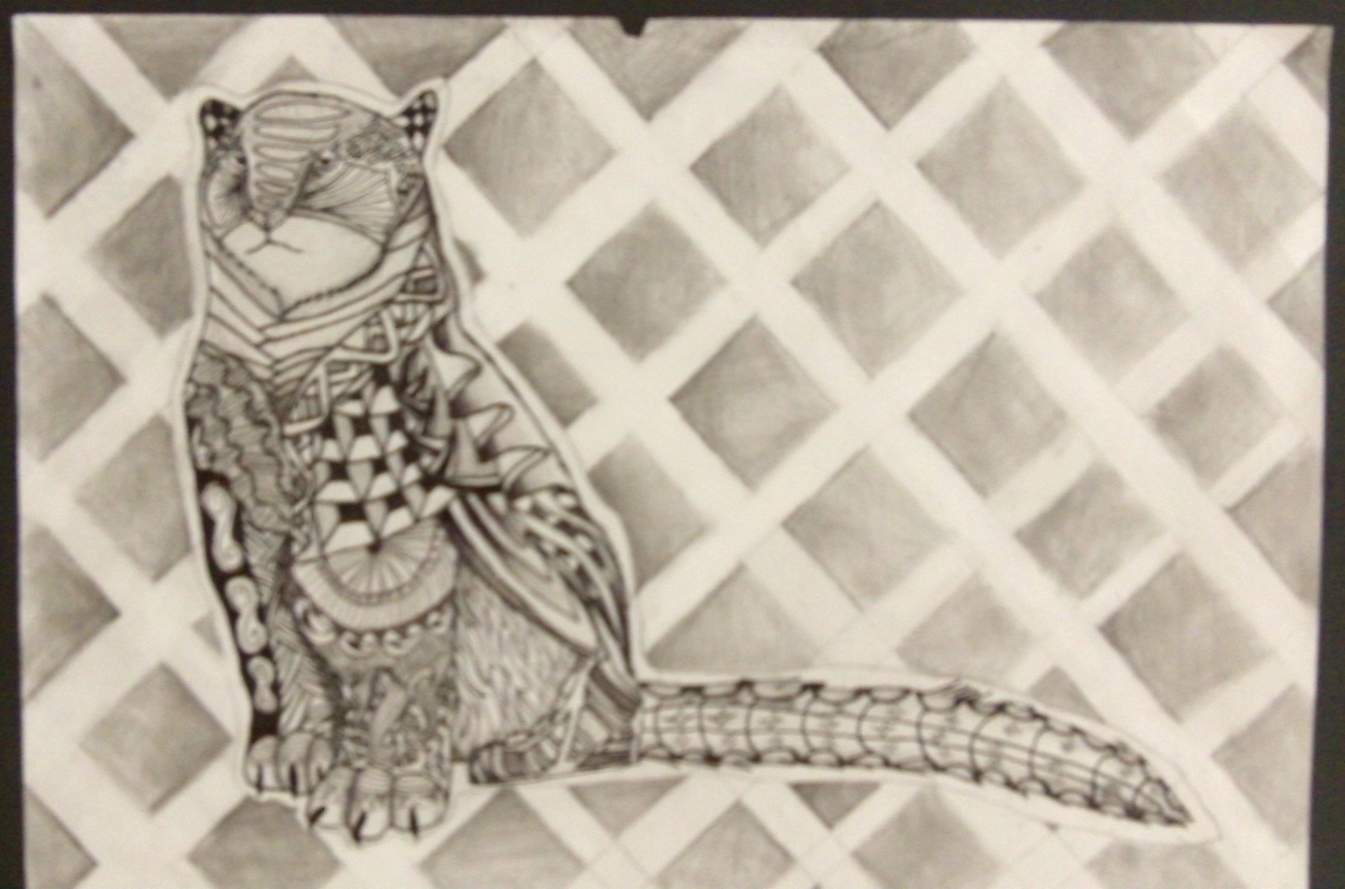 Zentangled Endangered Species Done By Grades 7 Amp 8 In