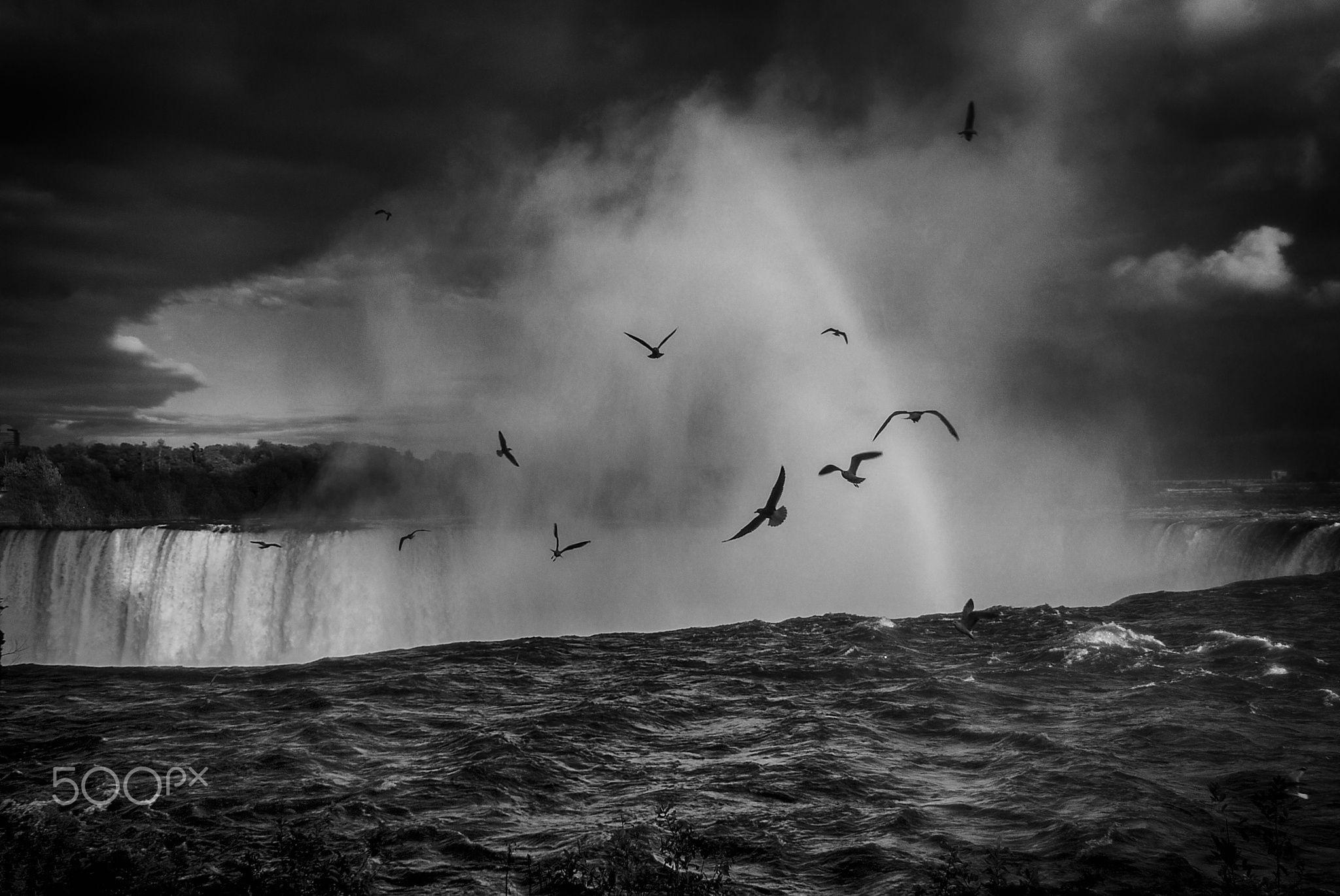 Hanging around - Eine Aufnahme der Niagara Falls vom letzten Jahr. Umgewandelt in SW.