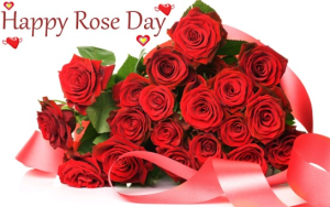 Rose Day Status 2016 Wishes SMS Quotes Images Dp Profile Pic Photos Best Messages