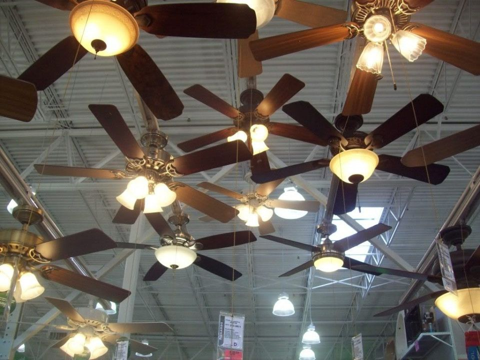 20 Ceiling Fans At Menards Best Modern Furniture Check More